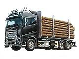 TAMIYA 300056360 56360-1 Volvo FH16 Holztransporter,...